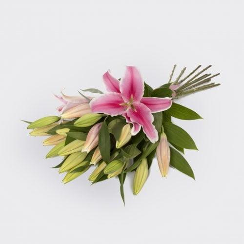 Oriental Lilies. The Petal Provedore. Melbourne