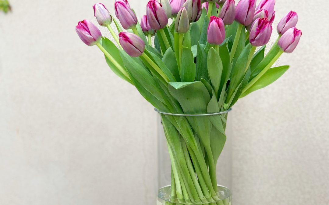 How do I stop my tulips from drooping?